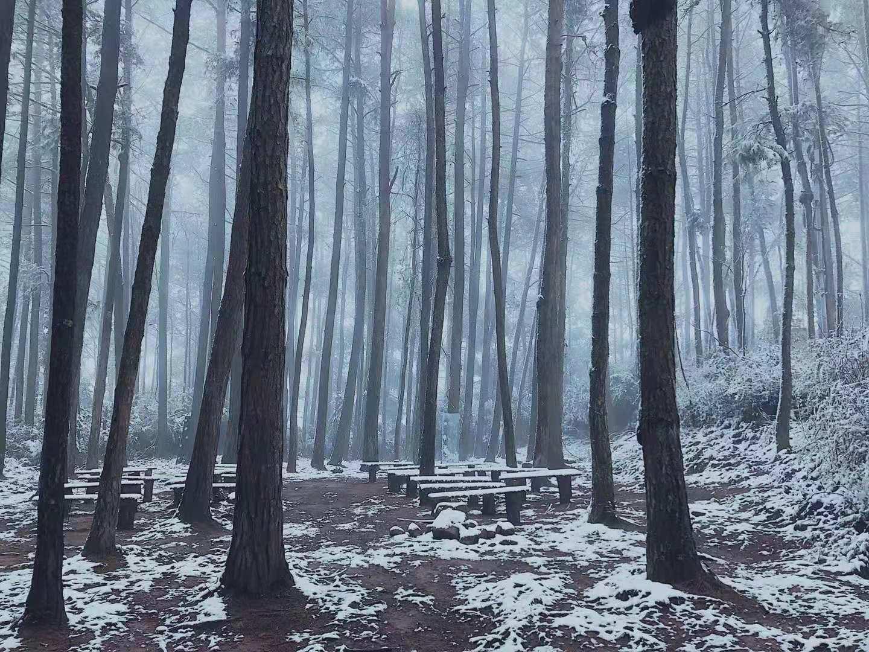 天马山雪景