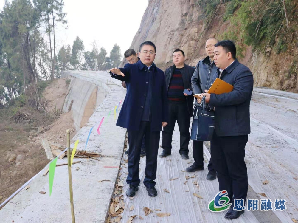 楊波調研植樹造林基地建設工作